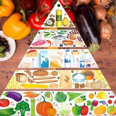 食品ピラミッド