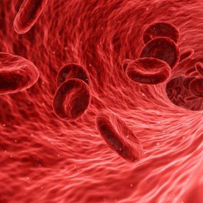 免疫の再構築